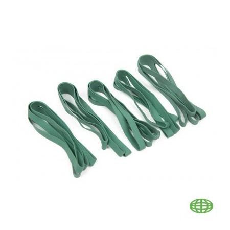 BOX BAND green 10'
